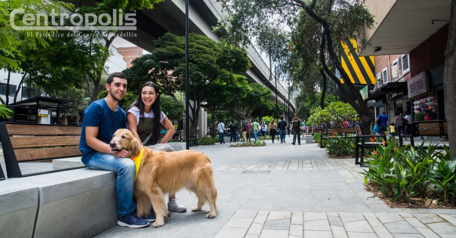 Paseo Bolívar, gran obra que pide acompañamiento